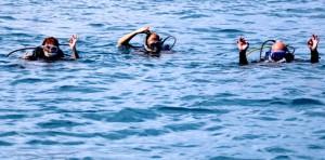 Diving OK Culebra