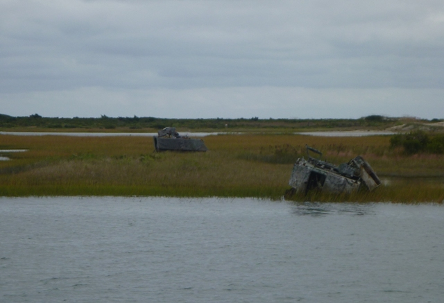 Some of the many wrecks or targets on the shores at Camp Lejeune