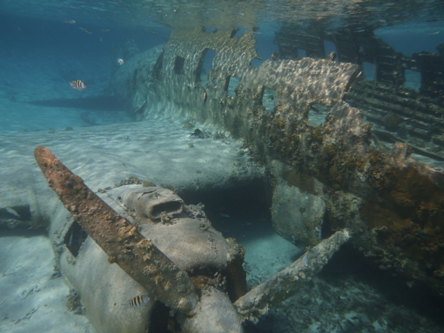 Snorkeling the plane at Normans Cay where drug lord Carlos Lehder smuggled drugs in the 1980s before being caught and sent to jail.