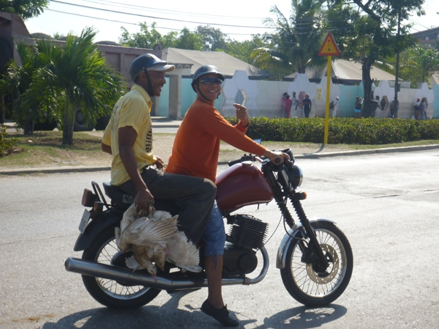 Motor-taxi with customer who had live chickens as passengers too