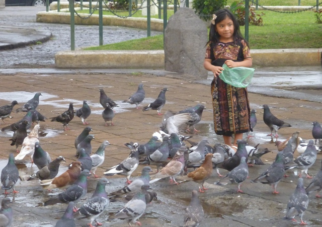 This little girl had such fun feeding the pigeons