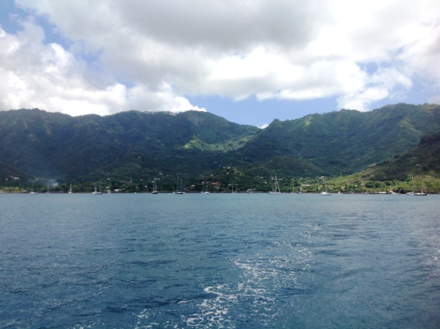 Nuku Hiva had quite a few boats anchored for cyclone season