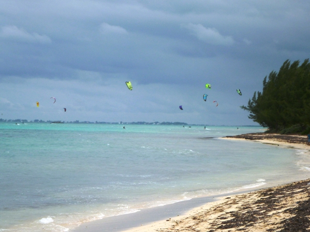 Lots of kite surfers off Barkers Point playing in the wind