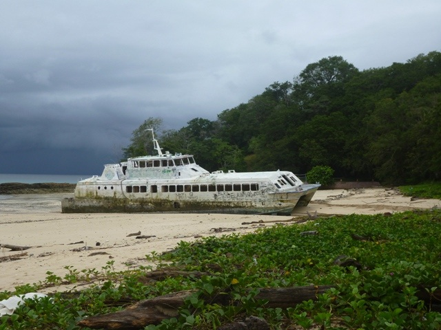 Found a Wrecked Ferry in one of the bay's