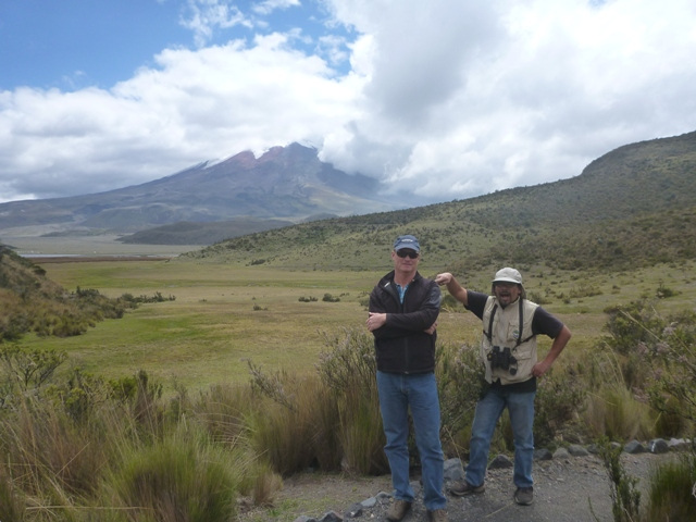 Cotopaxi Volcano in the background, an active volcano