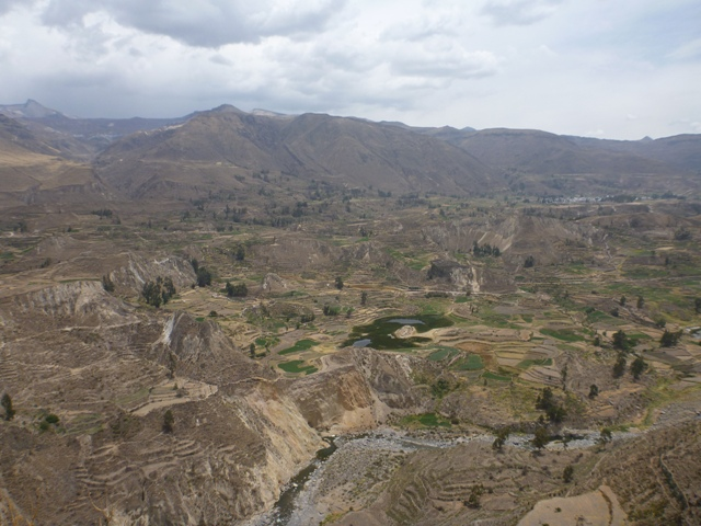 Colca Canyon near Chivay, the inca terraces perfect for separating crops